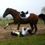 На лихом коне в Олимпиаду