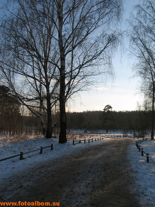 К усадьбе Деда Мороза через лес