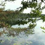Озерный край на Псковщине