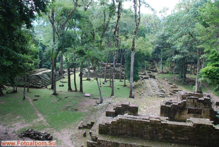 Общая площадь древнего города майя в районе Копана составляет около 24 кв.км