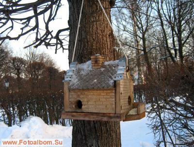 Для зимующих птиц (у Голландского домика) Зимняя прогулка в Кусково...