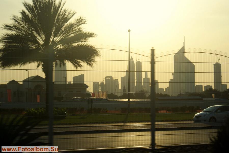 Небоскребы причудливых форм и пальмы - сочетание, придающие Дубаи какую-то