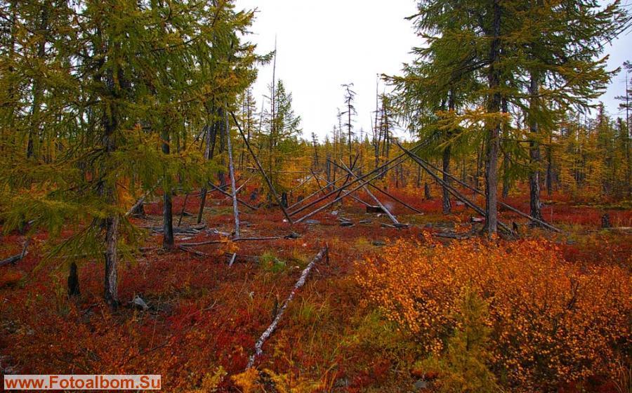Осень в предгорьях