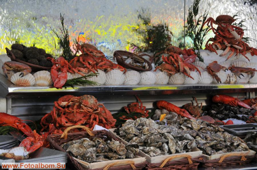 а вот мидии и морской гребешок, а также мясо крабов и других ракообразных