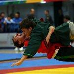 В Казани состоялось торжественное открытие Чемпионата и первенства России по борьбе «Корэш»