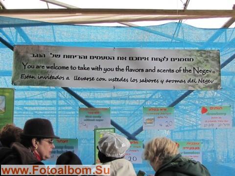 Плакат приглашает посетить достопримечательности Негева