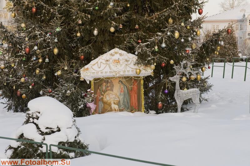 Елочки еще по новогоднему украшены